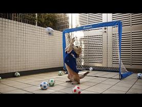 footballing1
