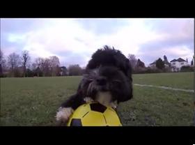 footballing4